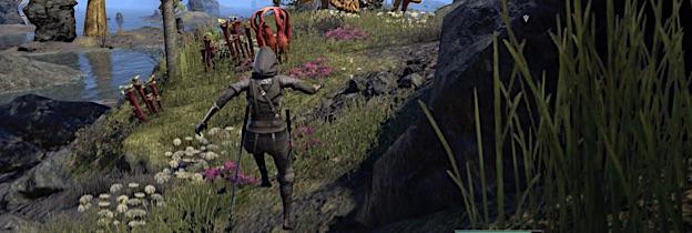 Immagine del gioco The Elder Scrolls Online: Morrowind per Playstation 4