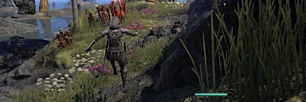 Immagine del gioco The Elder Scrolls Online: Morrowind per Xbox One
