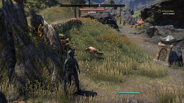 Immagine -2 del gioco The Elder Scrolls Online: Morrowind per Playstation 4