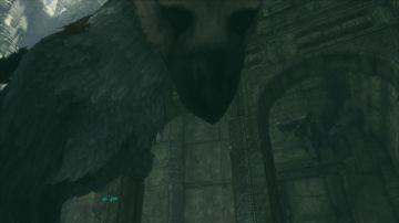 Immagine 3 del gioco The Last Guardian per Playstation 4