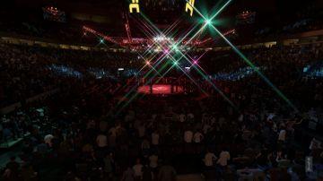 Immagine -2 del gioco EA Sports UFC 3 per Playstation 4