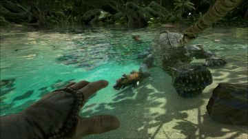 Immagine -3 del gioco ARK: Survival Evolved per Playstation 4