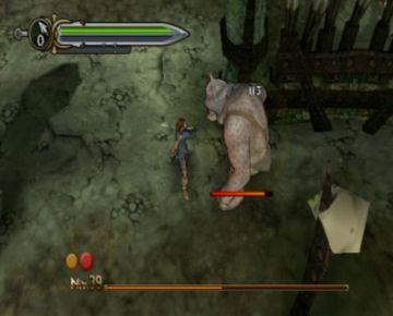 Immagine 0 del gioco Il Signore degli Anelli: L'Avventura di Aragorn per Playstation 2