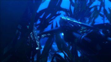 Immagine -5 del gioco Tomb Raider: Underworld per Playstation 3