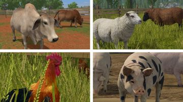 Immagine -11 del gioco Farming Simulator 17: Platinum Edition per Playstation 4