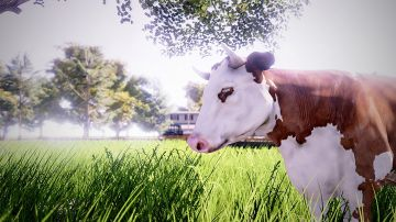 Immagine -4 del gioco Real Farm per Xbox One