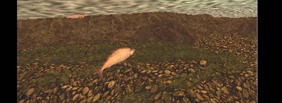 Reel Fishing: The Great Outdoors per PlayStation PSP
