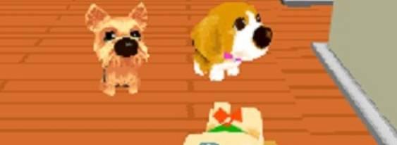 Dogz per Nintendo DS