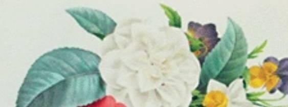 Paint by DS per Nintendo DS