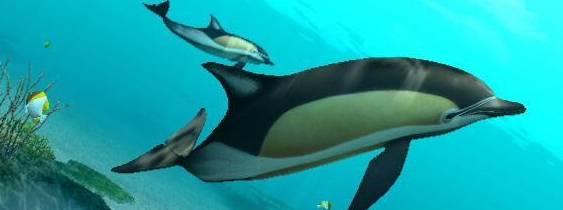 Endless ocean 2 Avventure Negli Abissi per Nintendo Wii