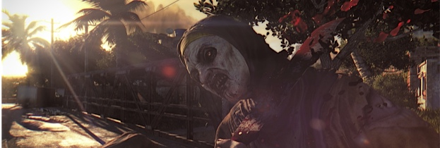 Immagine del gioco Dying Light per PlayStation 3