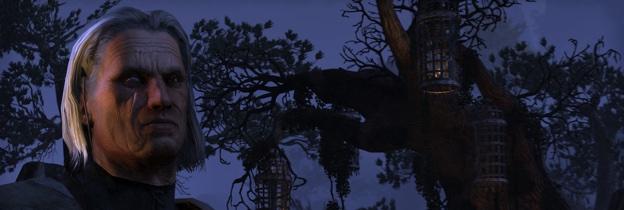 The Elder Scrolls Online: Tamriel Unlimited per PlayStation 4