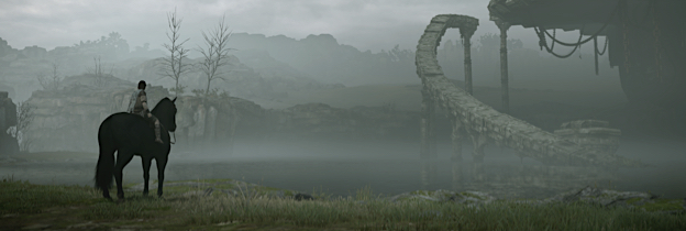 Shadow Of The Colossus per Playstation 4