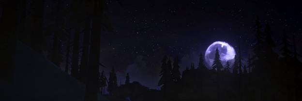 Immagine del gioco The Long Dark per PlayStation 4