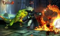 Cross-Play di Dragon's Crown per PS Vita