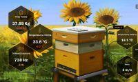 Grazie agli utenti, Bee Simulator e Nacon sono riuscite ad adottare un Alveare 3Bee