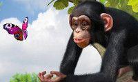 Online la recensione di Zoo Tycoon per Xbox One