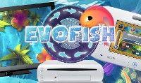 Online la recensione di Evofish