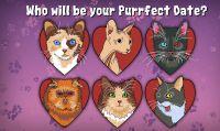 I ''gatti in calore'' si danno appuntamento in Purrfect Date