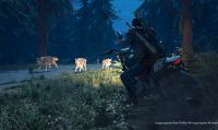 La data di lancio di Days Gone sarà rivelata a breve