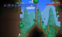 Terraria su PlayStation Vita questa estate
