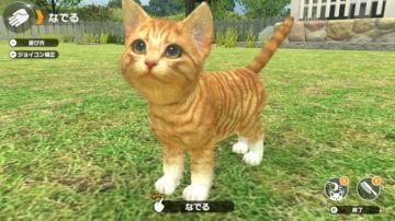 Immagine -5 del gioco Little Friends: Dogs & Cats per Nintendo Switch