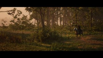 Immagine 37 del gioco Red Dead Redemption 2 per Xbox One