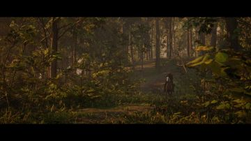 Immagine 73 del gioco Red Dead Redemption 2 per Xbox One