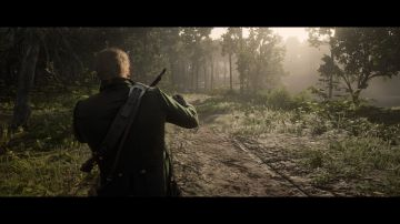 Immagine 34 del gioco Red Dead Redemption 2 per Xbox One