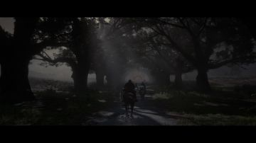 Immagine -9 del gioco Red Dead Redemption 2 per Xbox One