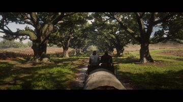 Immagine -6 del gioco Red Dead Redemption 2 per Xbox One