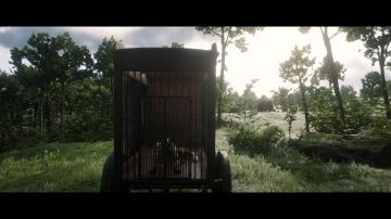 Immagine -14 del gioco Red Dead Redemption 2 per Xbox One