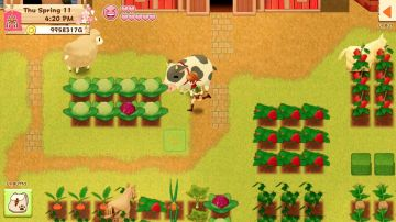 Immagine -4 del gioco Harvest Moon: Light of Hope per Nintendo Switch