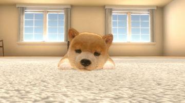 Immagine -4 del gioco Little Friends: Dogs & Cats per Nintendo Switch