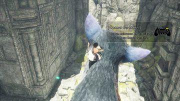 Immagine -5 del gioco The Last Guardian per Playstation 4