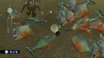 Immagine -5 del gioco Endless ocean 2 Avventure Negli Abissi per Nintendo Wii
