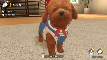 Immagine -3 del gioco Little Friends: Dogs & Cats per Nintendo Switch