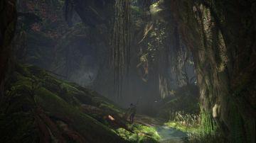 Immagine -11 del gioco Monster Hunter: World per Xbox One