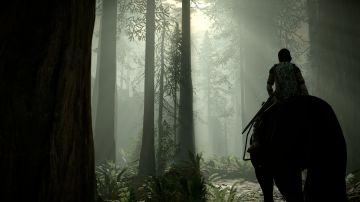 Immagine -11 del gioco Shadow Of The Colossus per PlayStation 4