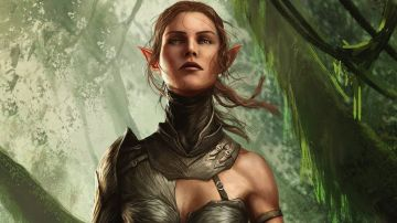 Immagine -3 del gioco Divinity: Original Sin II per Xbox One