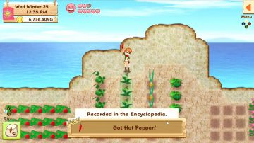 Immagine -2 del gioco Harvest Moon: Light of Hope per PlayStation 4