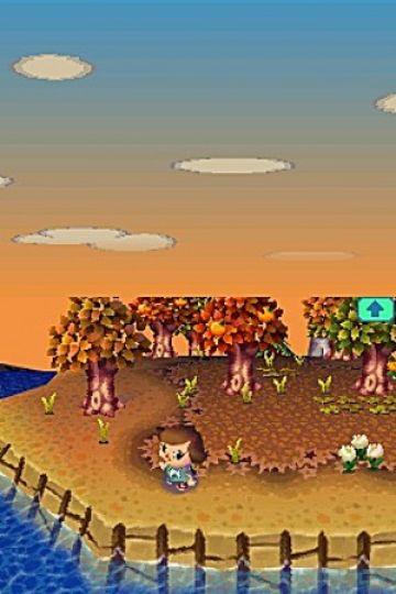 Immagine 0 del gioco Animal Crossing: Wild World per Nintendo DS