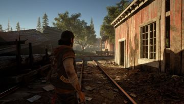 Immagine -1 del gioco Days Gone per PlayStation 4