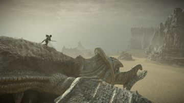 Immagine -10 del gioco Shadow Of The Colossus per PlayStation 4