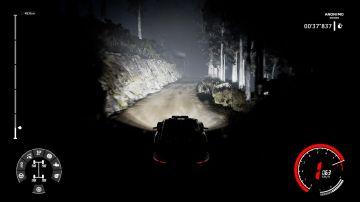 Immagine -9 del gioco WRC 9 per PlayStation 4