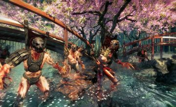 Immagine 0 del gioco Shadow Warrior per PlayStation 4