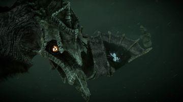 Immagine -4 del gioco Shadow Of The Colossus per PlayStation 4