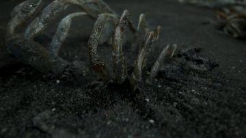 Immagine -7 del gioco Death Stranding per PlayStation 4