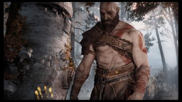 Immagine -14 del gioco God of War per Playstation 4