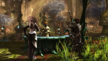 Immagine -3 del gioco Kingdoms of Amalur: Re-Reckoning per Xbox One